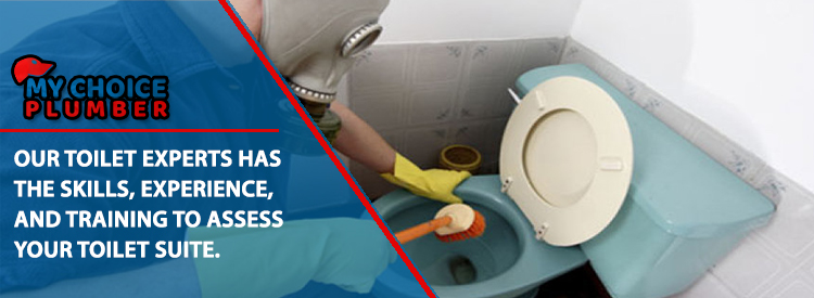 Toilet Repairs Taunton